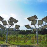 alberi_fotovoltaici